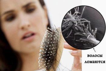 Ломкость волос в увеличении фото